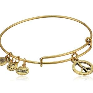 Alex & Ani- World Peace Charm  Bracelet